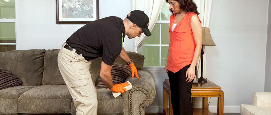 Burbank, CA carpet upholstery cleaning